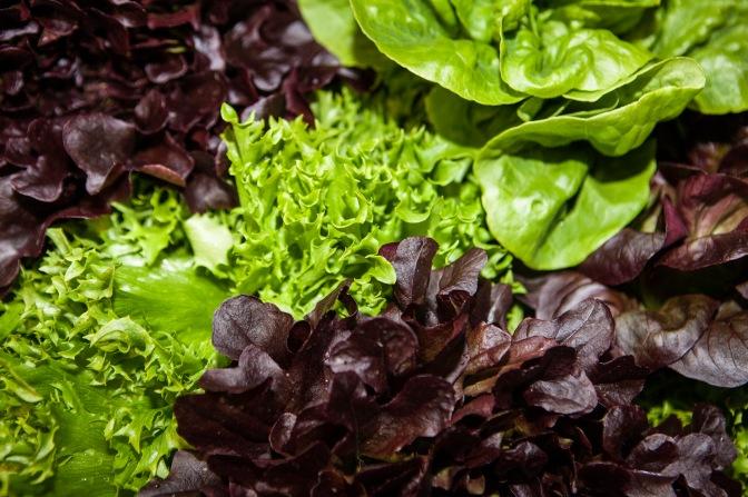 Mistä idea Sorrin pestyihin salaattisekoituksiin syntyi?
