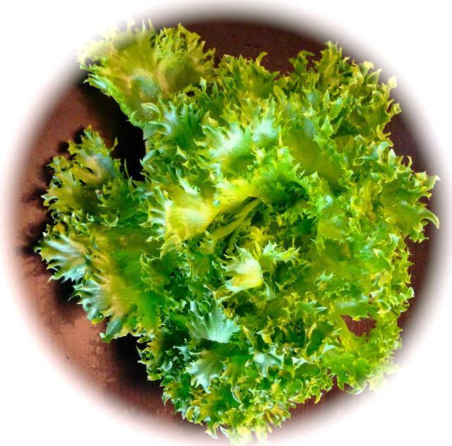 Salaatti nro 76 – Kana-sinihomejuusto-jääsalaatti