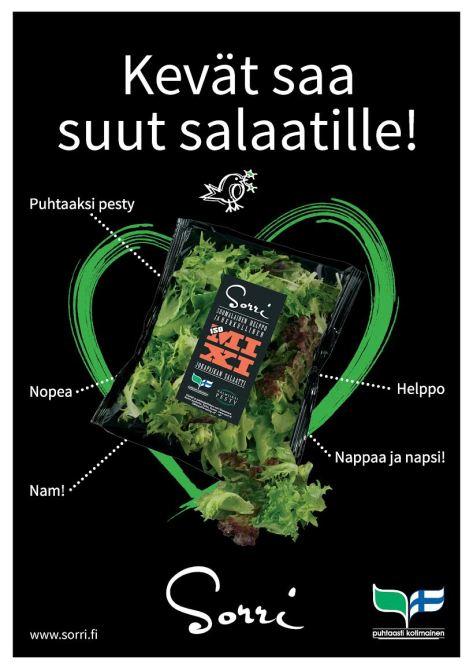 suut salaatille